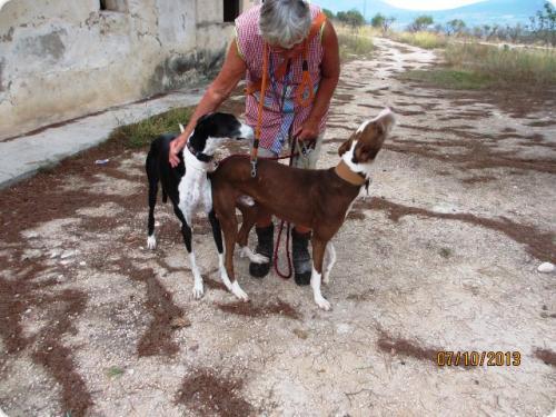 Tano & Marko con Susan