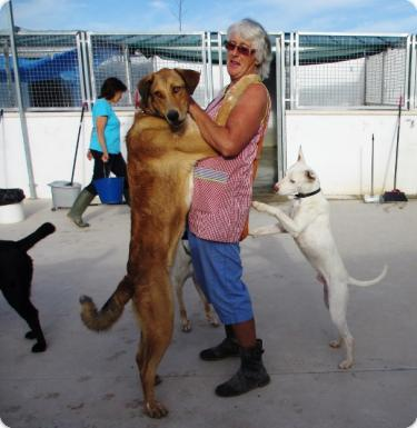Loli & Francisco con Susan